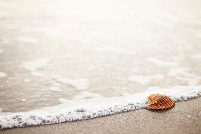 Muschel im Sand als Symbol für Seebestattung Gedenkmöglichkeiten